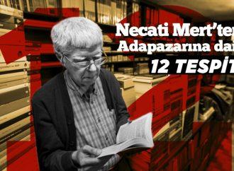 Necati Mert'ten Adapazarı'na Dair 12 Tespit